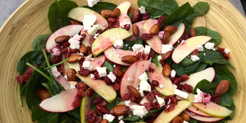 Apple, Cranberry and Spinach Salad