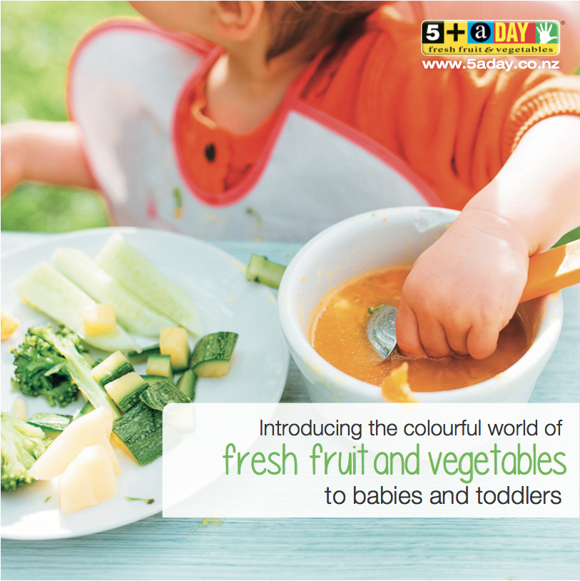 Introducing Fruit and Vegetables to Babies and Toddlers Brochure