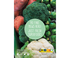 Poster A4 No Fake News Vegetables