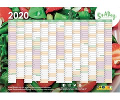 5+ A Day 2020 Wall Planner
